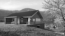 tradicionalna hiša