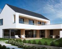 sodobna-arhitektura-poševna-streha